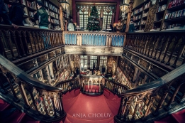 porto libary old style portugal anja choluy travel to